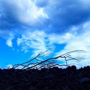 ハワイ島 ポホイキ
